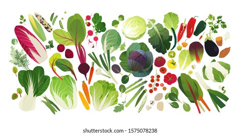 Vegetable and herb icons, food background