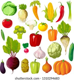 Vegetable Illustration Big Set Collection Mix - Vector Illustration