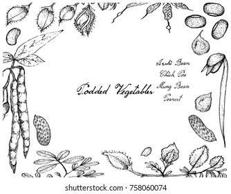 Vegetable, Illustration Frame of Hand Drawn Sketch Fresh Podded Vegetables Isolated on White Background.