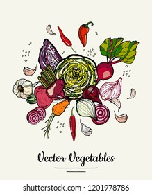 Vegetable isolated hand drawn illustration. Vector hipster hand drawn colored vegetables for vegetarian poster, cooking school, restauran tmenu, food article, food website, cooking book, shop,festival