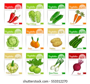 Vegetable label and tag set. Farm fresh carrot, pepper, onion, beet, cabbage, potato, zucchini, cucumber, kohlrabi and pattypan squash vegetable product cards and banners for food packaging design