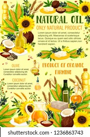 Vegetable oils and organic farming products. Vector sunflower and colza, coconut butter or avocado and hemp seed, hazelnut and corn cooking, olive oil in bottles and pitcher jars