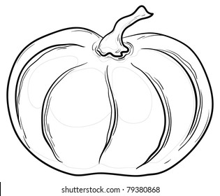 Vegetable, pumpkin, vector, monochrome graphic contours on white background
