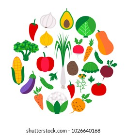 Vegetable set in circle. Vector illustration of vegetables on white.