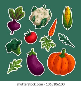 Vegetable sticker set. Variety of decorative vegetables with grain texture isolated on green background. Vegan healthy eating, vegetarian organic food, diet. Vector illustration