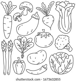 Vegetable vector illustration in hand drawn style isolated on white background