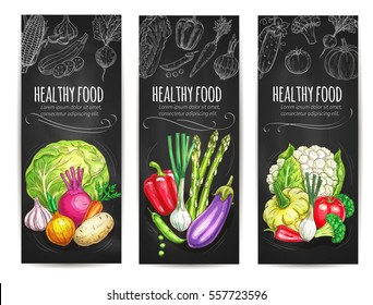 Vegetables banners of healthy veggies as cauliflower cabbage, garlic and potato, beet and leek, eggplant and asparagus, bell pepper, squash, tomato and broccoli. Vector farm harvest on chalkboard
