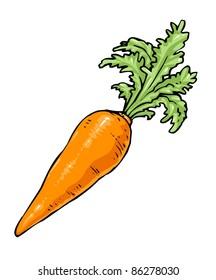 Vegetables - Cartoon Carrot