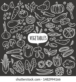 Vegetables doodle drawing collection. vegetable such as carrot, corn, ginger, mushroom, cucumber, cabbage, potato, etc. Hand drawn vector doodle illustrations in black and white blackboard chalk style
