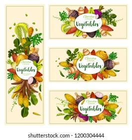 Vegetables and exotic farm veggies banners. Vector natural vegan organic potato, radish or turnip and legume bread beans, artichoke with jicama, yam and cassara tuber