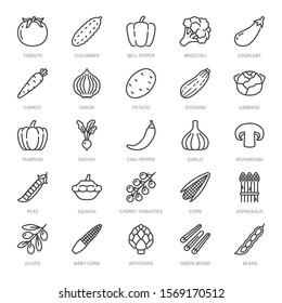Vegetables flat line icons set. Fresh food - tomato, broccoli, corn, pepper, carrot, pumpkin vector illustrations. Outline pictogram for vegetarian grocery store. Pixel perfect. Editable Strokes