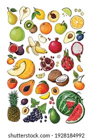 Vegetables and fruits food vector poster. Color sketch of products. Decor for kitchen and restaurant. Farm fruits and berries. Watermelon, banana, pineapple, apple, pear