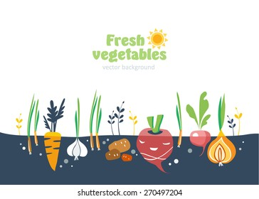 vegetables garden background