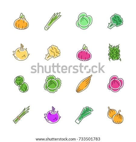 Vegetables icons - Onion, cabbage and cauliflower
