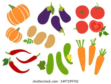 Vegetables set. Potato, cucumber, tomato, pepper, chili, carrot, pumpkin and eggplant. Agriculture, gourds. Hand drawn vector sketch. Healthy food collection. Vegetarian menu