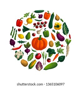 Vegetables set. Variety of decorative vegetables with grain texture isolated on white. Farm products round composition for restaurant menu, market label. Vector illustration