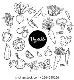 Vegetables sketch or hand drawn style with black and white color
