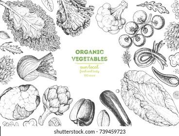 Vegetables top view frame. Farmers market menu design template. Organic vegetables food poster. Vintage hand drawn sketch vector illustration. Linear graphic. Engraved style.