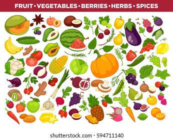 vegetables or veggies farmer harvest, exotic tropical juicy fruits, forest or garden berries and herbal spices or spicy condiments and seasonings. Vector isolated icons set