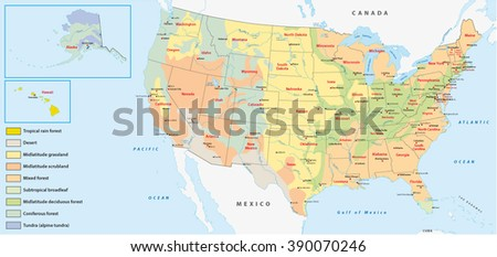 Vegetation Map United States America Stock Vector (Royalty Free ...