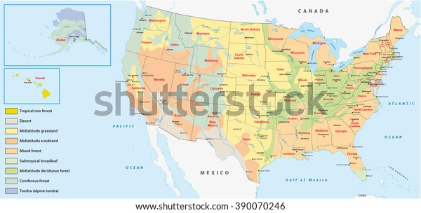 Vegetation Map United States America Stock Vector (Royalty Free ...