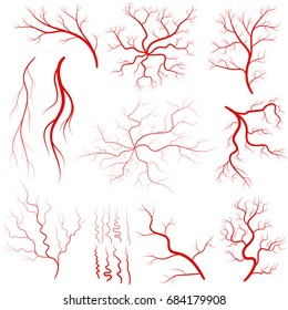 Vein set, Human vessel, blood arteries, eye veins silhouette, health red artery system. Vector
