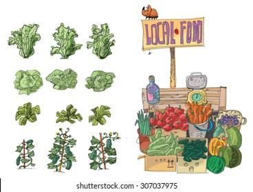 vendor of locally grown produce - cartoon