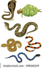 venomous snake vector cartoon set