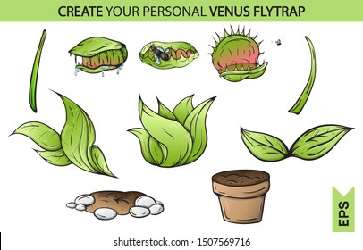 Venus fly trap eat. catches a fly. Isolated white background creative high quality Vector EPS 10