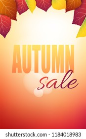 Vertical autumn layout with colorful leaves and autumn sale text message. Fall background vector illustration