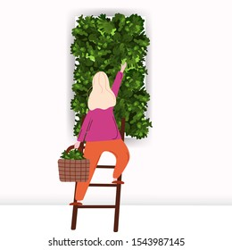Outstanding Moss Wall Interior Images Stock Photos Vectors Shutterstock Pabps2019 Chair Design Images Pabps2019Com