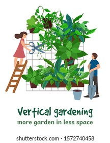 Vertical gardening and tiny people growing house greenery wall. Little man and woman, pots with fresh plants, green leaves, home flowers. Vector green house