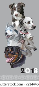 Vertical postcard with dogs of different breeds (Rottweiler; border collie; Italian Greyhound; Dalmatian, siberian husky)on grey background. 2018 year of dog.