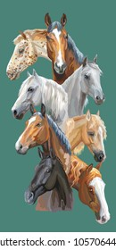 Vertical postcard with portraits of horses breeds (Trakehner horse, Welsh Pony, Orlov Trotter, Arabian horse, Appaloosa horse) isolated on green background. Vector colorful illustration.