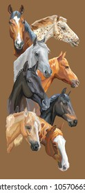 Vertical postcard with portraits of horses breeds (Trakehner horse, Welsh Pony, Orlov Trotter, Arabian horse, Appaloosa horse) isolated on brown background. Vector colorful illustration.