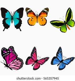 Very high quality original trendy vector set with colorful butterfly