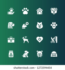 vet icon set. Collection of 16 filled vet icons included Dog food, Dog, Pet, Grooming, Veterinary, Veterinarian, Kennel, Pawprint