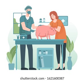 Veterinarian giving injection to a pig in vet clinic. Pet health care and medical concept