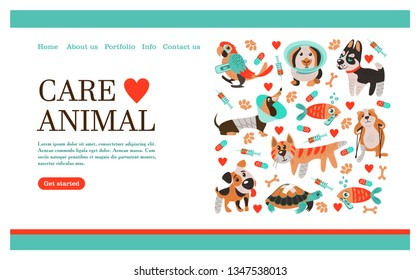 Veterinary care. Care of animals. Banner with space for text for veterinary clinic. A set of cute sick animals.