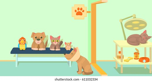 1000 Cartoon Veterinary Stock Images Photos Vectors
