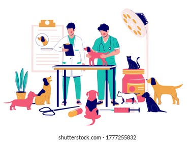 Veterinary clinic medical specialists vets examining pet dog, vector flat illustration. Veterinary office interior with doctors treating cats, dogs diseased or injured animals. Veterinarian services.