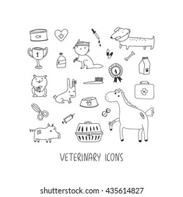 Veterinary hand drawn icon set