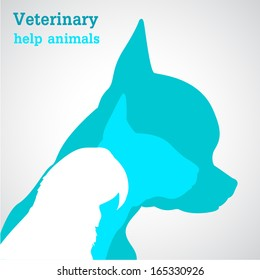 Veterinary help animals