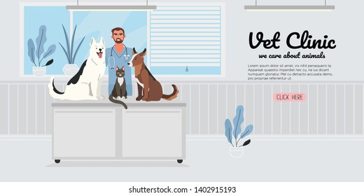 A veterinary male doctor with a cat and two dogs in a veterinary office. Healthy and happy pets. Creative banner, flyer, landing page or a blog post for a vet clinic, veterinary office or hospital.