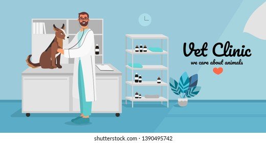 A veterinary male doctor examining a dog or a puppy with a stethoscope. Creative banner, flyer, landing page or a blog post for a vet clinic, veterinary office or hospital.