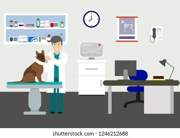 Veterinary office with doctor and pets. Doctor veterinary in clinic with dog. Vector illustration. Veterinarian doctor holds dog on examination table in vet clinic