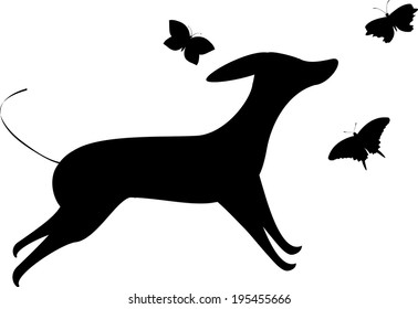 The view of dog with butterflies