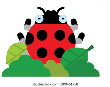 The view of ladybug