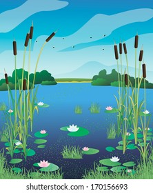 View of the lake with water lilies and cattails. Vector illustration.