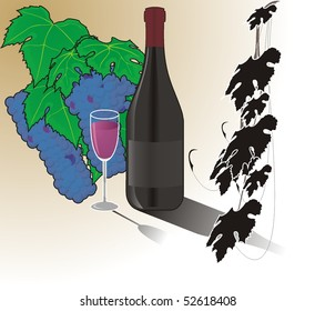 Vine, a bottle of wine and a glass